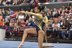 2015 ginástica das senhoras do NCAA - WVU Imagem de Stock