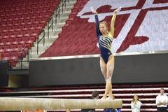 2015 ginástica das senhoras do NCAA - WVU Foto de Stock