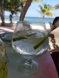 gin Stockfotos