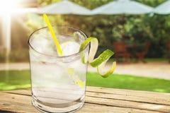gin fotos de stock royalty free