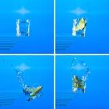 gin Royaltyfria Bilder