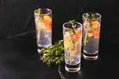 Gin bitter lemon with thyme and grapefruit. Alcoholic cocktail gin bitter lemon with thyme and grapefruit. Black background. Horizontal view. Copy space Stock Photos