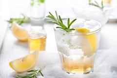 Gin citronen, rosmarin väser, coctailen royaltyfri bild