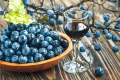 Gin di prugnola Immagine Stock Libera da Diritti