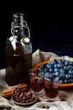 Gin di prugnola Vetro del liquido bruno-rossastro dolce leggero casalingo del prugnolo liquore o vino Prugnola-condito immagini stock libere da diritti