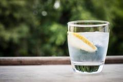Gin e cocktail del tonico Immagini Stock Libere da Diritti