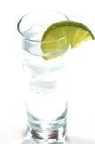 Gin e tonico Fotografia Stock Libera da Diritti