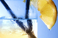 Gin e tonico Immagini Stock