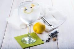 Gin e tonico su un vetro di highball immagini stock