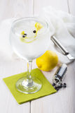 Gin e tonico su un vetro di highball fotografia stock