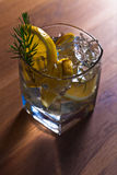 Gin  with lemon Royalty Free Stock Image