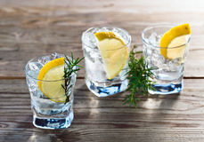 Gin with lemon and ice Royalty Free Stock Photos