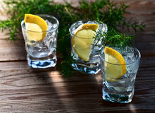 Gin with lemon and ice Royalty Free Stock Photography