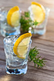 Gin with lemon and ice Royalty Free Stock Images