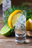 Gin with lemon Royalty Free Stock Photography