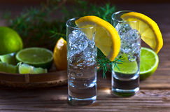 Gin with lemon Stock Photos