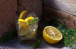 Gin with lemon and  juniper branch Royalty Free Stock Photo