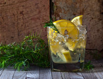 Gin with lemon and  juniper branch Royalty Free Stock Images