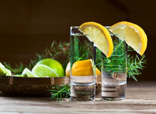 Gin with lemon and juniper branch Stock Photos