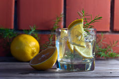 Gin with lemon and juniper branch Royalty Free Stock Photography