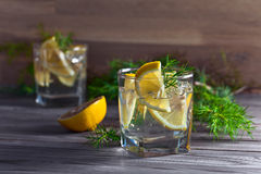 Gin with lemon and juniper branch Stock Photo