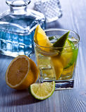 Gin with lemon and lime Stock Photo