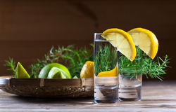 Gin with lemon Royalty Free Stock Photo