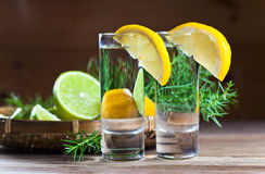 Gin with lemon Stock Image