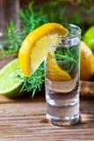 Gin with lemon Stock Photos