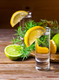 Gin with lemon Royalty Free Stock Images