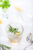 Gin,lemon, rosemary fizz, cocktail Royalty Free Stock Photography