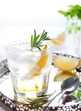 Gin,lemon, rosemary fizz, cocktail Royalty Free Stock Image