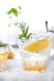 Gin,lemon, rosemary fizz, cocktail Stock Image