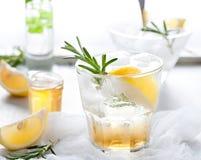 Gin,lemon, rosemary fizz, cocktail Stock Images