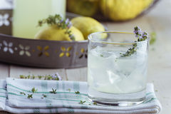 Gin lemonade with thyme Royalty Free Stock Photography
