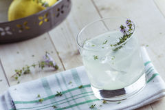 Gin lemonade with thyme Royalty Free Stock Photos