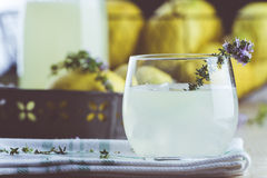 Gin lemonade with thyme Royalty Free Stock Images