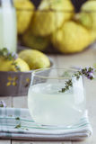 Gin lemonade with thyme Stock Images
