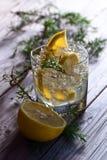 Gin mit Zitrone und dem Wacholderbuschzweig stockfotos