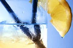 Gin och Tonic Arkivbilder