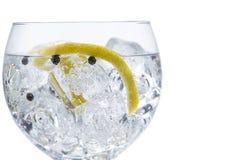 Gin och uppiggningsmedel arkivfoto