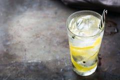 Gin- och uppiggningsmedelalkoholcoctailen dricker med is i exponeringsglas arkivbild