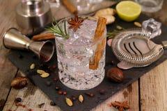 Gin- och uppiggningsmedelcoctailar med rosmarinstjärnaanis och kanel arkivbilder