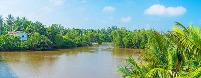Gin Oya River Stock Image