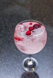 Gin with red fruits Royalty Free Stock Photos