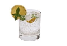 Gin tonic. Royalty Free Stock Photos
