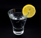 Gin and tonic. In a glass with a lemon on black royalty free stock images