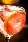 Gin Tonic imagens de stock royalty free