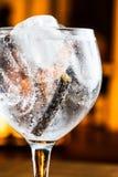 Gin tonic royaltyfri foto