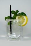 Gin tonic Arkivbilder